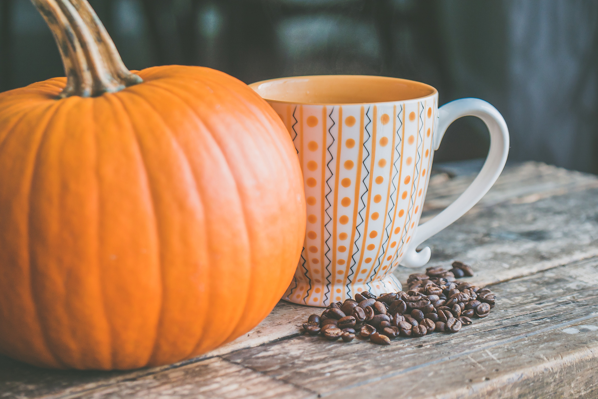 Pumpkin Spice Season: Beneficial or #Basic?